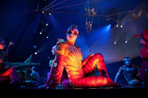 """OVO """"Cirque du Soleil"""""""
